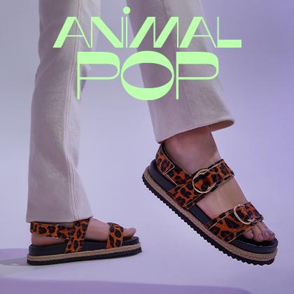 Animal Pop